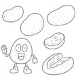 set of potato vector image