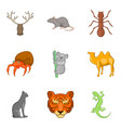 tiger icons set cartoon style vector image vector image