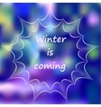 Winter mandala on blurred background vector image