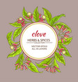 clove frame vector image vector image
