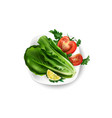 composition fresh vegetables on a white plate vector image