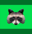 low poly racoon vector image vector image