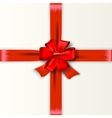 Red Ribbon with Satin Bow vector image