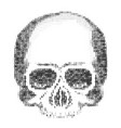 skull silhouette from numbers 0 and 1 ascii art vector image