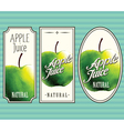 Apple juice labels set vector image
