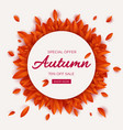 autumn sale round banner with leaves seasonal vector image