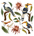 birds and tropical leaves and flowers isolated vector image vector image