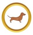 Brown dachshund dog icon vector image vector image