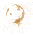 close up of coffee cup stains vector image vector image