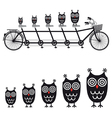 Cute owls on tandem bicycle vector | Price: 1 Credit (USD $1)