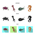 design of sea and animal sign collection vector image vector image