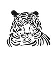 tiger sketch for your design vector image vector image