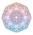 colorful flower mandala arabic indian asian vector image