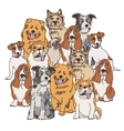 Group dogs color isolate on white vector image