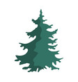 hand drawn christmas tree isolated on a white vector image
