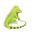 reptile iguana clipart tropic zoology cartoon vector image