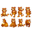 set bears isolated on white vector image