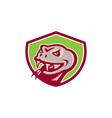 Viper Snake Serpent Head Shield Retro vector image vector image