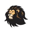 wild lion head logo template design vector image
