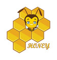 a cute little honey bee vector image