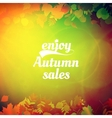 Autumn sale design template vector image vector image