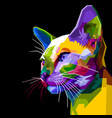 colorful siamese cat on pop art style vector image vector image
