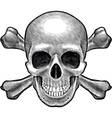 Skull and crossbones figure vector image vector image