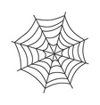 spider web art vector image