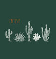 stock set of hand drawn cactus vector image vector image