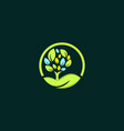 tree oak circle naturally business logo vector image vector image
