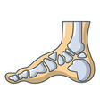 xray of foot icon cartoon style vector image vector image