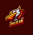 awesome pelican logo sport template vector image