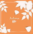 collection beautiful white autumn leaves isolated vector image