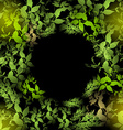 glare green leaves on a black background Round vector image vector image