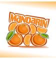 mandarin still life vector image vector image