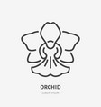 orchid flat line icon sign of blossom vector image vector image