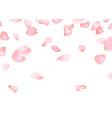 pink sakura or rose falling petals vector image