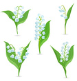 Spring collection of tiny bouquets of Lily Of The vector image vector image