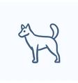 Dod sketch icon vector image vector image