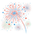 isolated firework on white background vector image