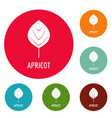 apricot leaf icons circle set vector image vector image