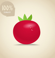 Cute red tomatoes vector image vector image