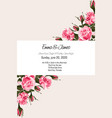 greeting card with tender pink roses vector image