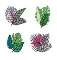 hand drawn tropical leaves color set set vector image