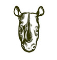 head of african rhino vector image vector image