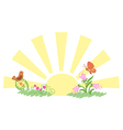 sunrise and summer nature vector image vector image