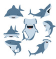 white shark and hammerhead shark set vector image vector image