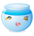cute fishes in tank cartoon isolated vector image