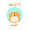 flat cartoon cat icon design adopt vector image vector image