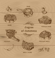 meat degree of doneness vector image vector image